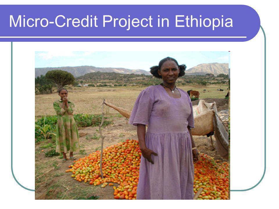 Micro-Credit Project in Ethiopia