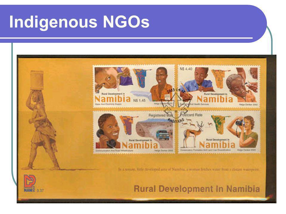 Indigenous NGOs