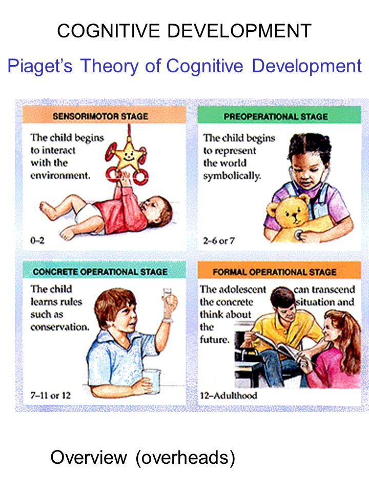 COGNITIVE DEVELOPMENT Piaget's Theory of Cognitive Development Overview (overheads)
