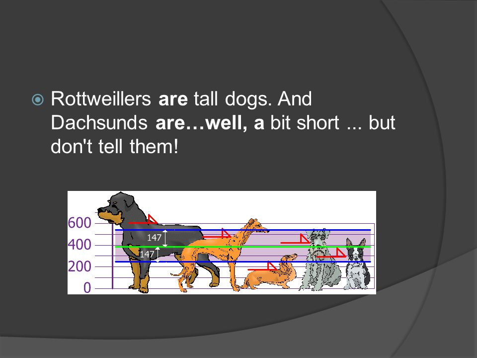  Rottweillers are tall dogs. And Dachsunds are…well, a bit short... but don t tell them!