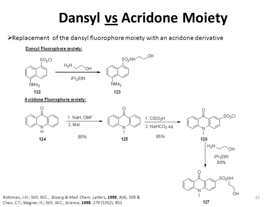 Dansyl vs Acridone Moiety  Replacement of the dansyl fluorophore moiety with an acridone derivative 43 Rothman, J.H.; Still, W.C., Bioorg.& Med. Chem