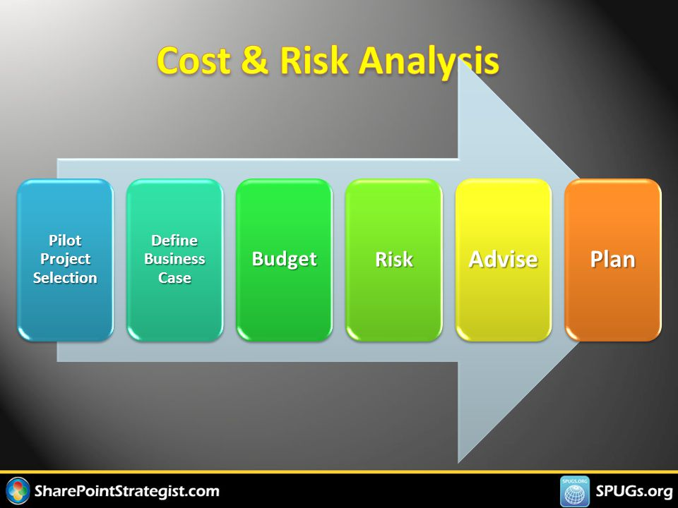 Pilot Project Selection Define Business Case BudgetRiskAdvisePlan