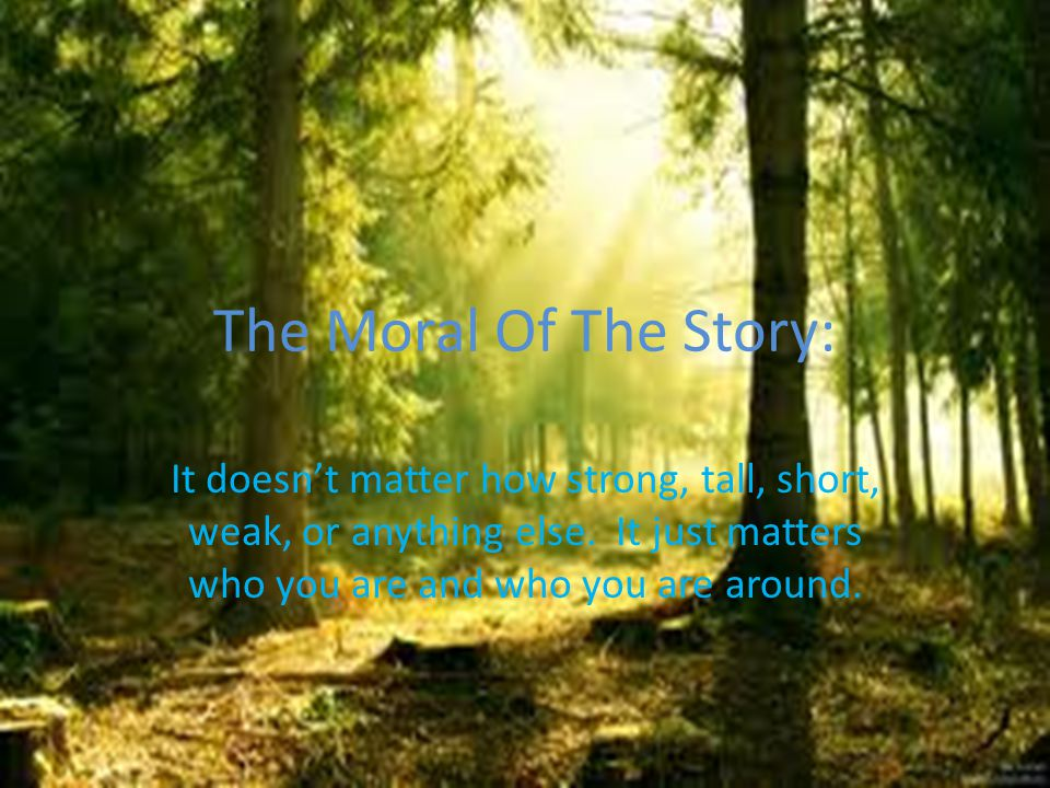 The Moral Of The Story: It doesn't matter how strong, tall, short, weak, or anything else. It just matters who you are and who you are around.