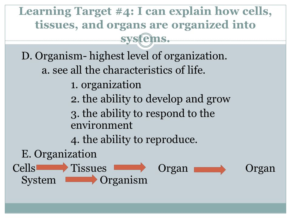 Learning Target #4: I can explain how cells, tissues, and organs are organized into systems. D. Organism- highest level of organization. a. see all th
