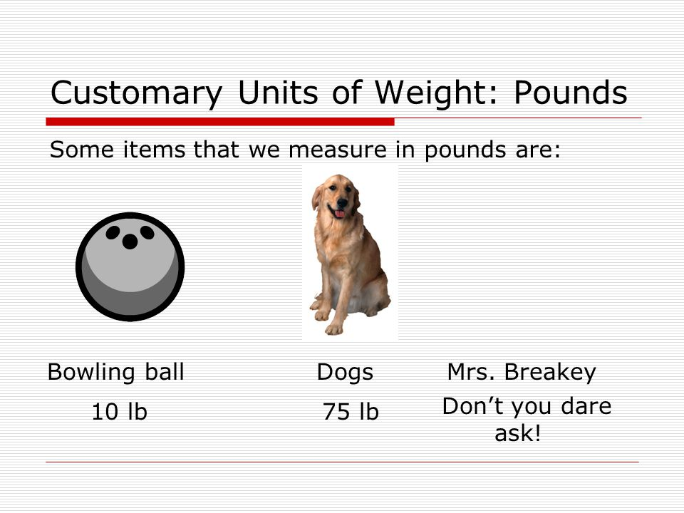 Customary Units of Weight: Pounds Some items that we measure in pounds are: Bowling ball 10 lb Dogs 75 lb Don't you dare ask.