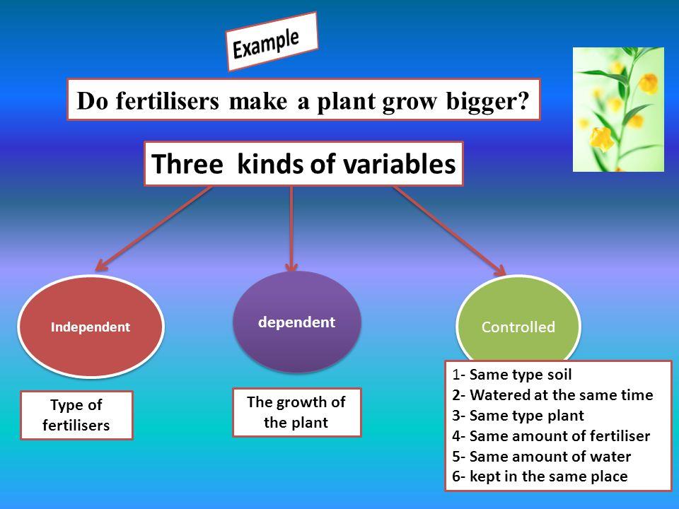 Do fertilisers make a plant grow bigger? Three kinds of variables Independent dependent Controlled Type of fertilisers The growth of the plant 1- Same