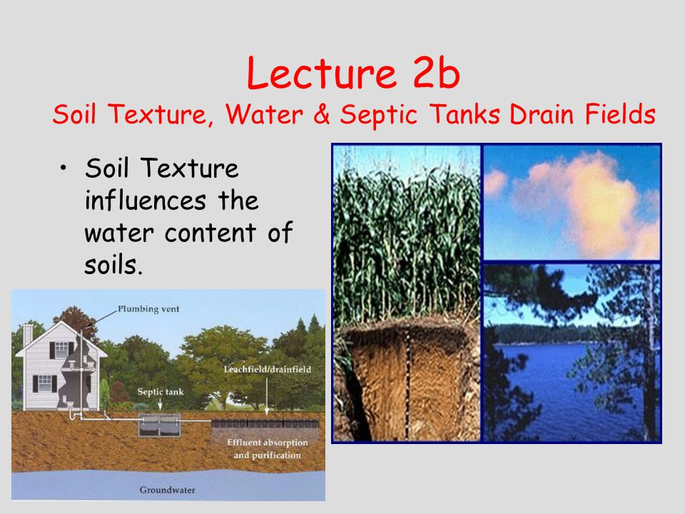 Lecture 2b Soil Texture, Water & Septic Tanks Drain Fields Soil Texture influences the water content of soils.