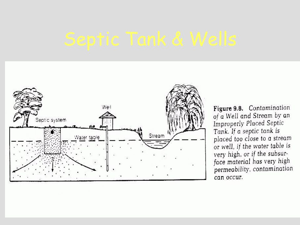Septic Tank & Wells