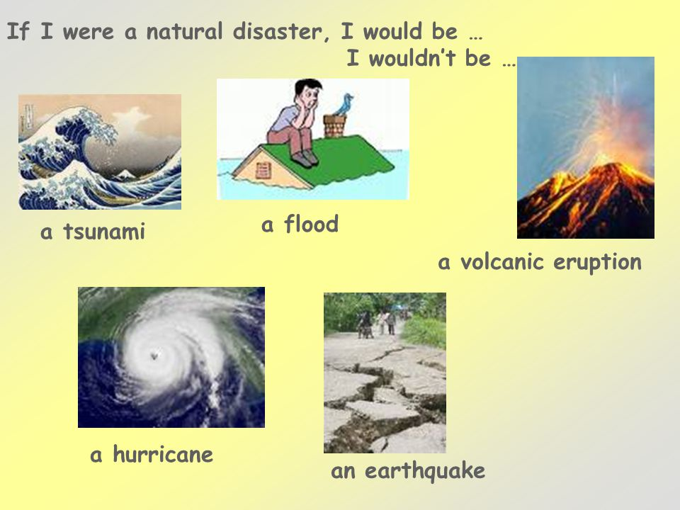 If I were a natural disaster, I would be … a tsunami a flood a volcanic eruption a hurricane an earthquake I wouldn't be …