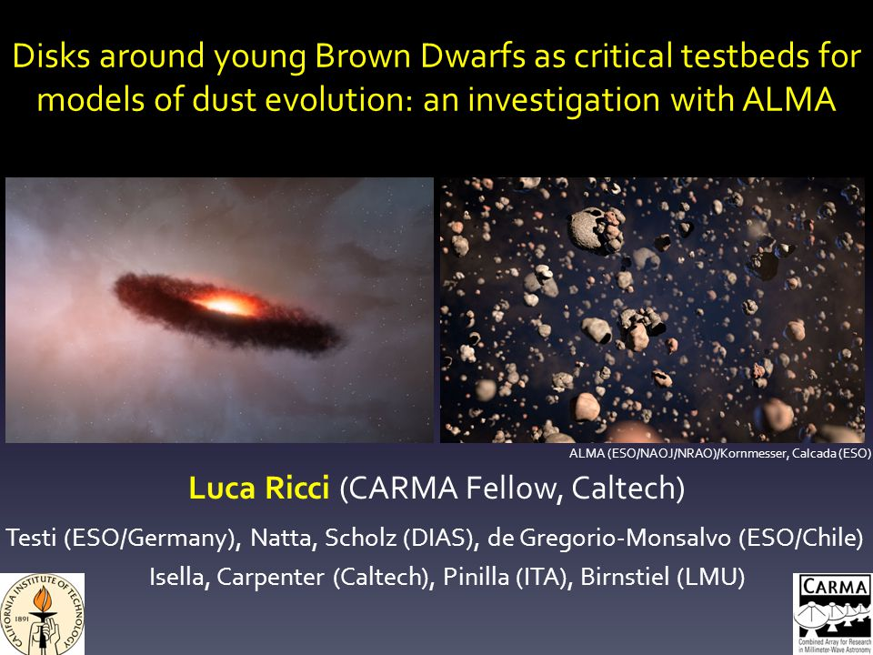 Disks around young Brown Dwarfs as critical testbeds for models of dust evolution: an investigation with ALMA Luca Ricci (CARMA Fellow, Caltech) Testi