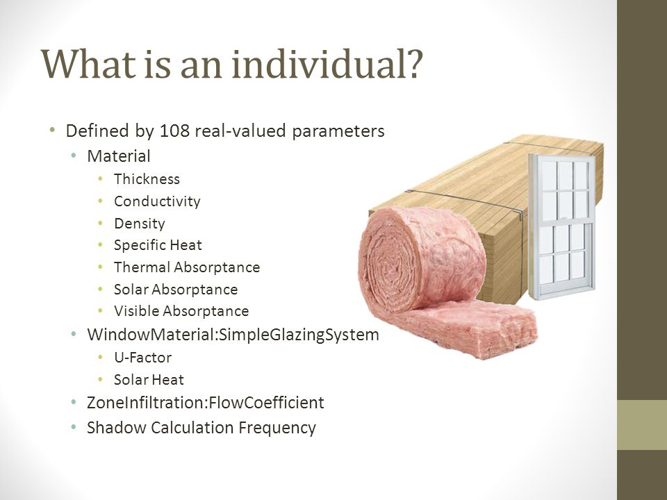 What is an individual.