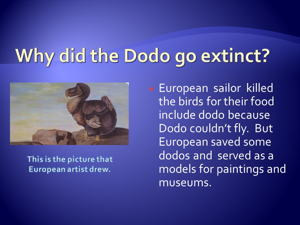  European sailor killed the birds for their food include dodo because Dodo couldn't fly.