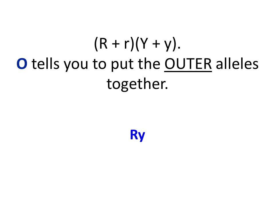 (R + r)(Y + y). O tells you to put the OUTER alleles together. Ry