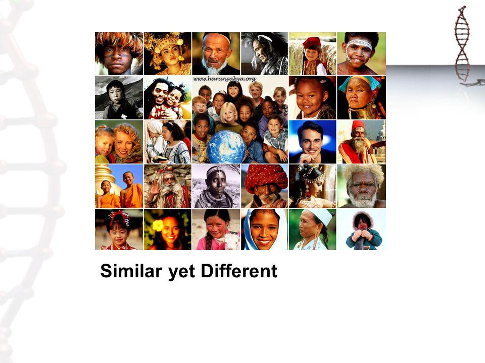 Similar yet Different