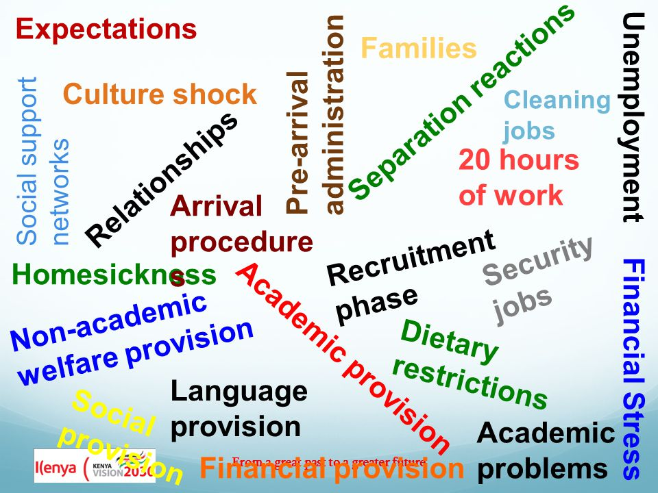 From a great past to a greater future Expectations Social support networks Culture shock Homesickness Relationships Recruitment phase Pre-arrival administration Arrival procedure s Academic provision Financial provision Language provision Non-academic welfare provision Social provision 20 hours of work Families Unemployment Security jobs Cleaning jobs Separation reactions Dietary restrictions Financial Stress Academic problems
