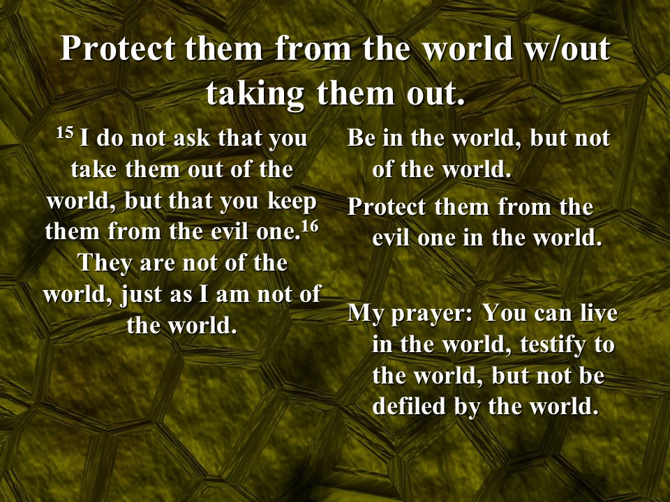 Protect them from the world w/out taking them out. 15 I do not ask that you take them out of the world, but that you keep them from the evil one. 16 T