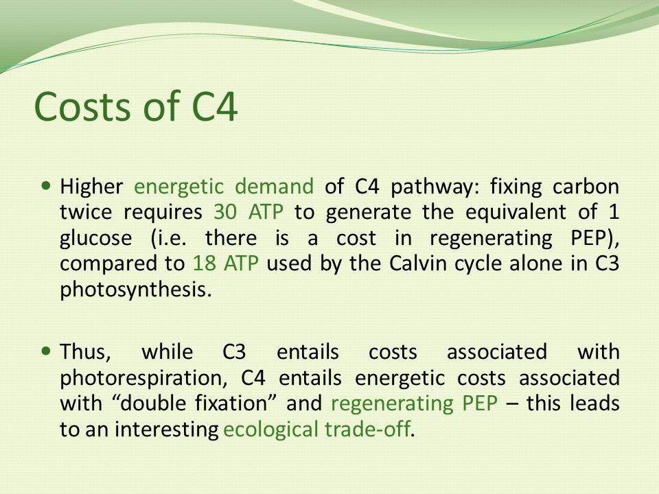 Costs of C4 Higher energetic demand of C4 pathway: fixing carbon twice requires 30 ATP to generate the equivalent of 1 glucose (i.e.