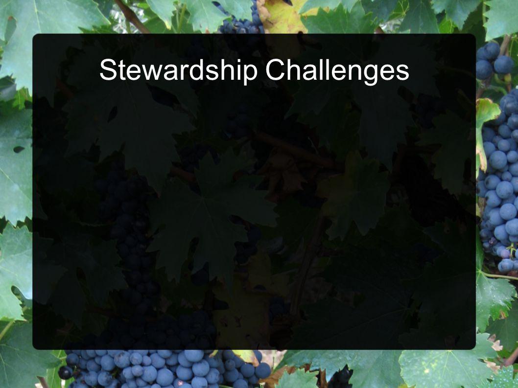 Stewardship Challenges
