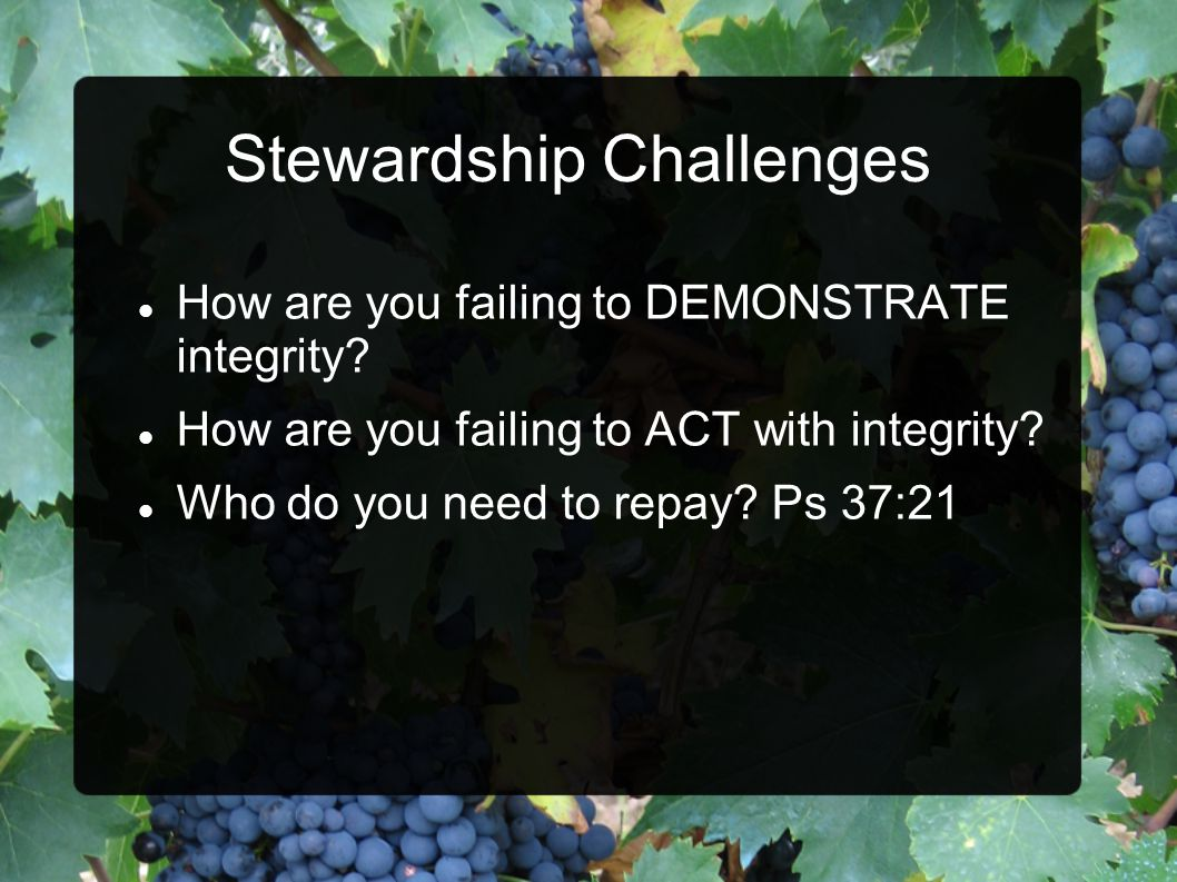 Stewardship Challenges How are you failing to DEMONSTRATE integrity.