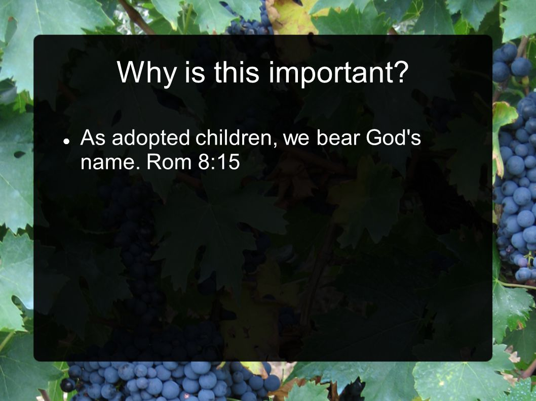 As adopted children, we bear God s name. Rom 8:15
