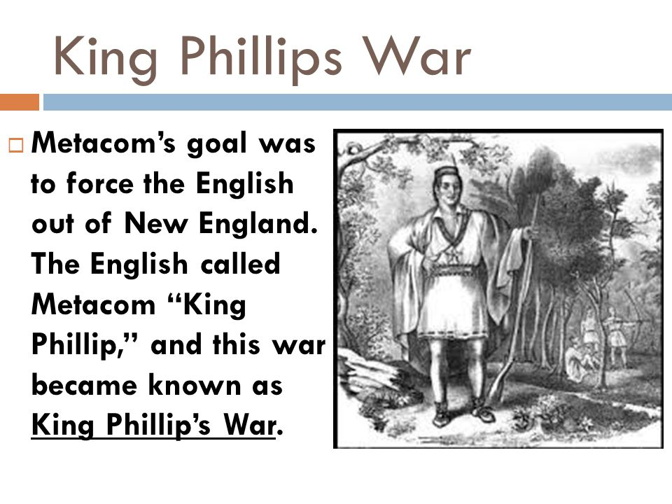 """King Phillips War  Metacom's goal was to force the English out of New England. The English called Metacom """"King Phillip,"""" and this war became known a"""