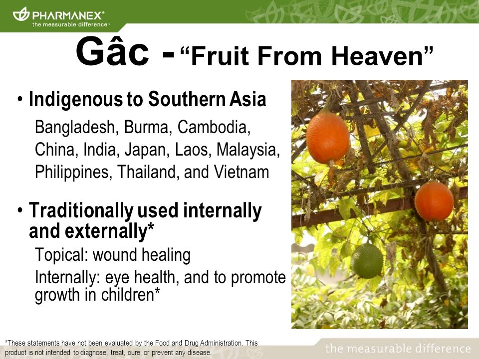 Indigenous to Southern Asia Bangladesh, Burma, Cambodia, China, India, Japan, Laos, Malaysia, Philippines, Thailand, and Vietnam Traditionally used internally and externally* Topical: wound healing Internally: eye health, and to promote growth in children* Gâc - Fruit From Heaven *These statements have not been evaluated by the Food and Drug Administration.