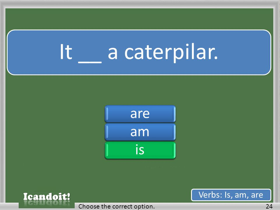 It __ a caterpilar. 24Choose the correct option. Verbs: Is, am, are areamisareamis