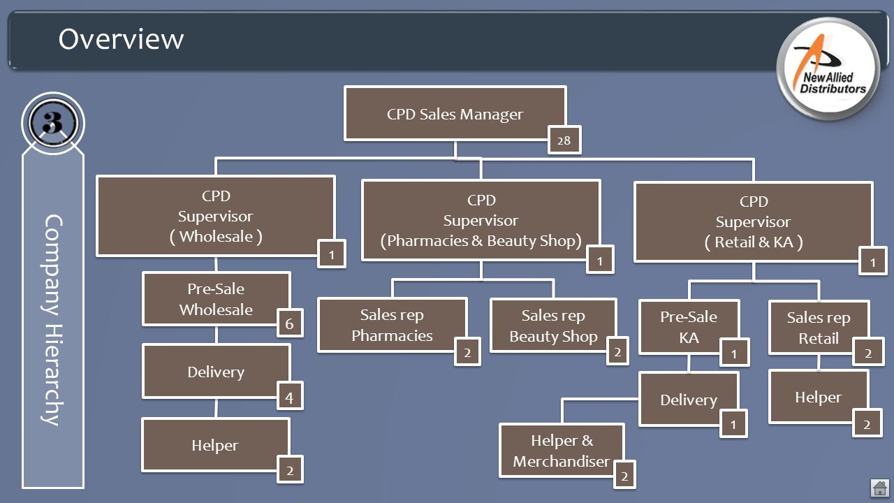 Overview Company Hierarchy CPD Supervisor (Pharmacies & Beauty Shop) CPD Supervisor (Pharmacies & Beauty Shop) 1 1 Pre-Sale Wholesale 6 6 Delivery 4 4 Helper 2 2 CPD Supervisor ( Wholesale ) 1 1 Sales rep Pharmacies 2 2 Sales rep Beauty Shop 2 2 CPD Sales Manager 28 CPD Supervisor ( Retail & KA ) CPD Supervisor ( Retail & KA ) 1 1 Pre-Sale KA 1 1 Delivery 1 1 Helper & Merchandiser 2 2 Sales rep Retail 2 2 Helper 2 2