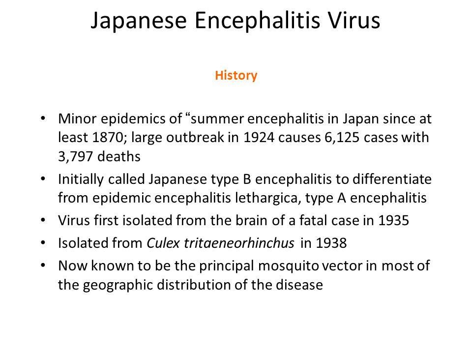 "Japanese Encephalitis Virus History Minor epidemics of "" summer encephalitis in Japan since at least 1870; large outbreak in 1924 causes 6,125 cases w"