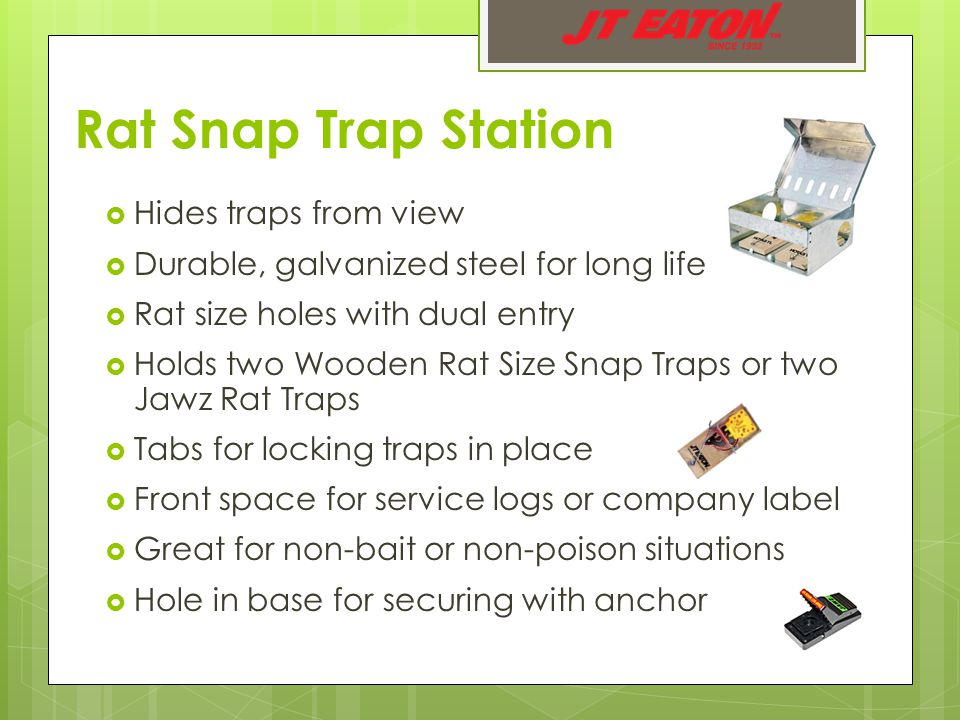Rat Snap Trap Station  Hides traps from view  Durable, galvanized steel for long life  Rat size holes with dual entry  Holds two Wooden Rat Size Snap Traps or two Jawz Rat Traps  Tabs for locking traps in place  Front space for service logs or company label  Great for non-bait or non-poison situations  Hole in base for securing with anchor
