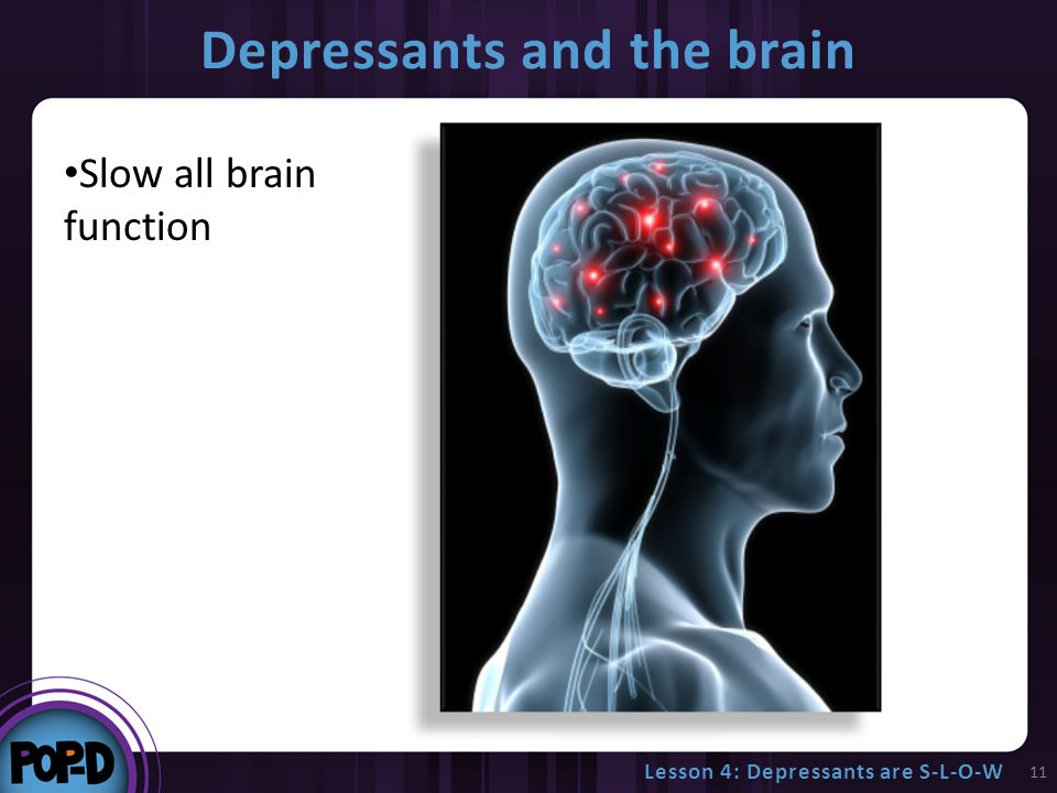 Depressants and the brain 11 Slow all brain function Lesson 4: Depressants are S-L-O-W