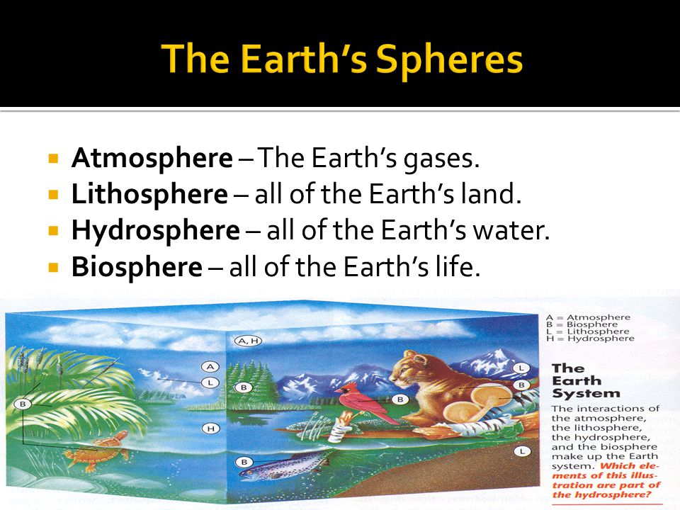  Atmosphere – The Earth's gases.  Lithosphere – all of the Earth's land.  Hydrosphere – all of the Earth's water.  Biosphere – all of the Earth's