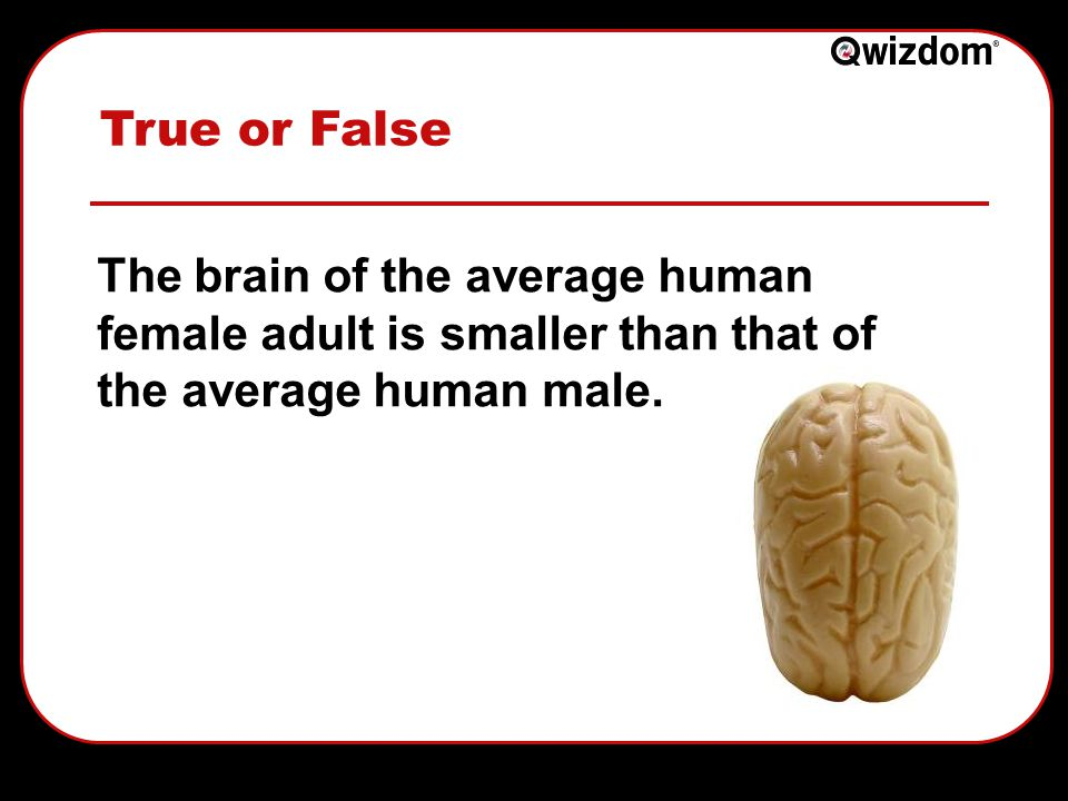 True or False The brain of the average human female adult is smaller than that of the average human male.