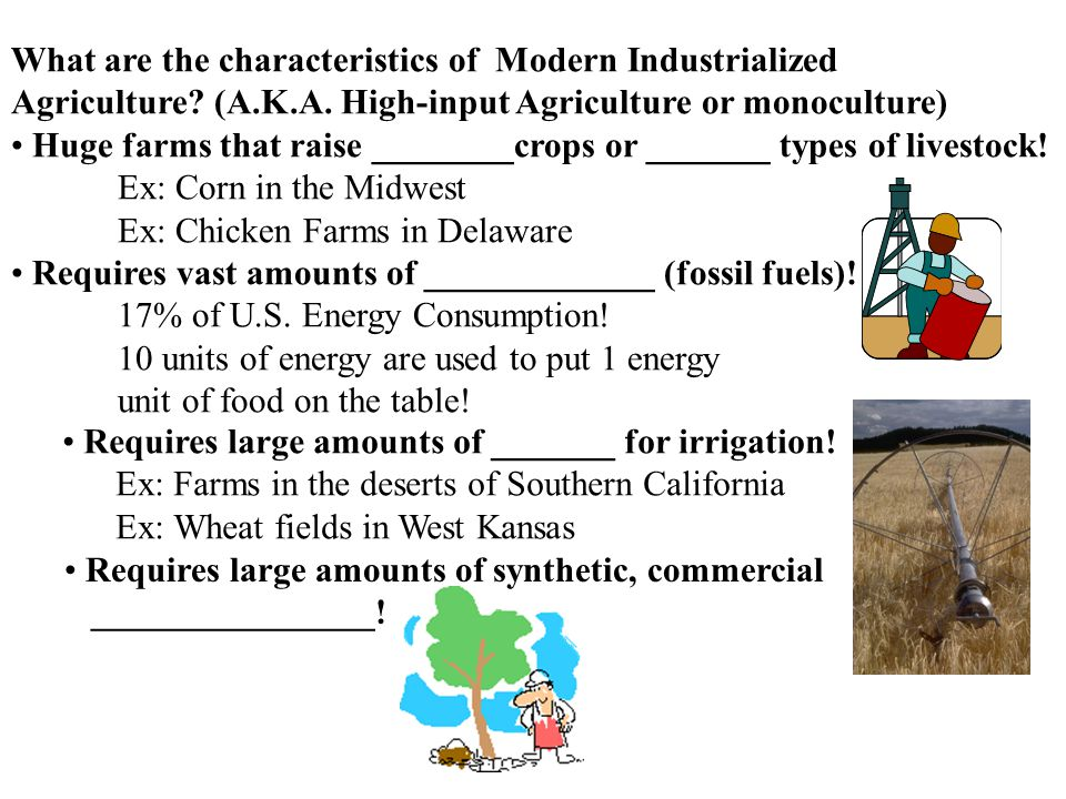What are the characteristics of Modern Industrialized Agriculture.