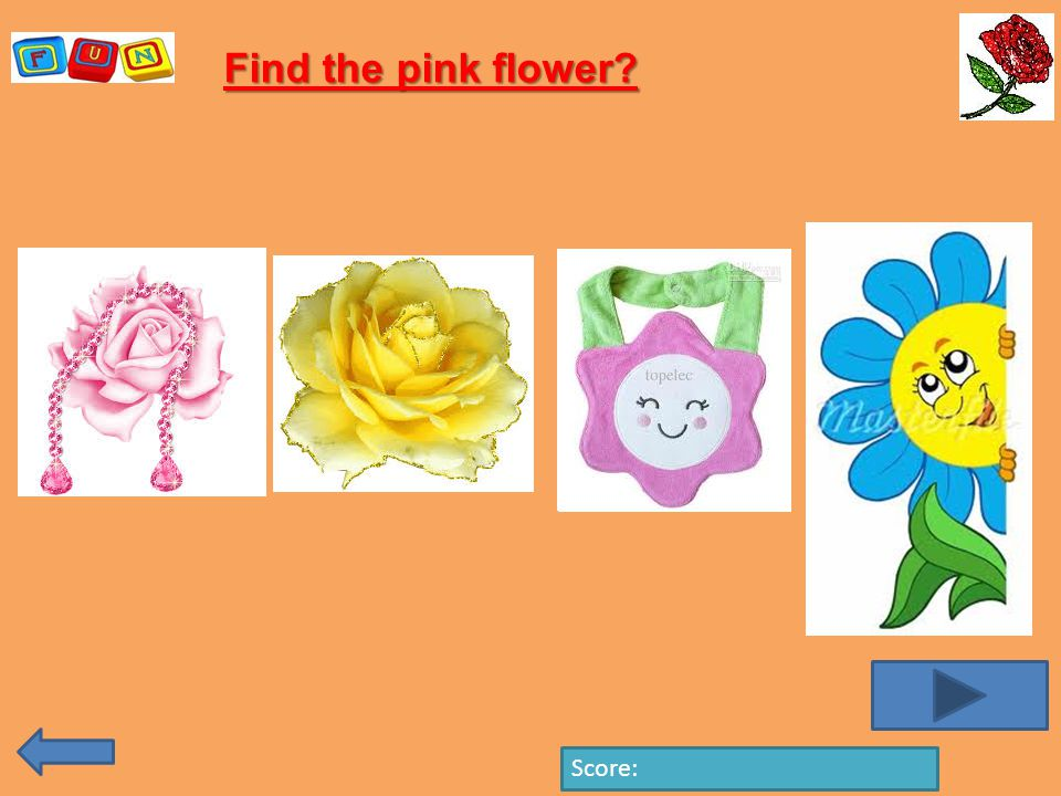 Find the pink flower Score: