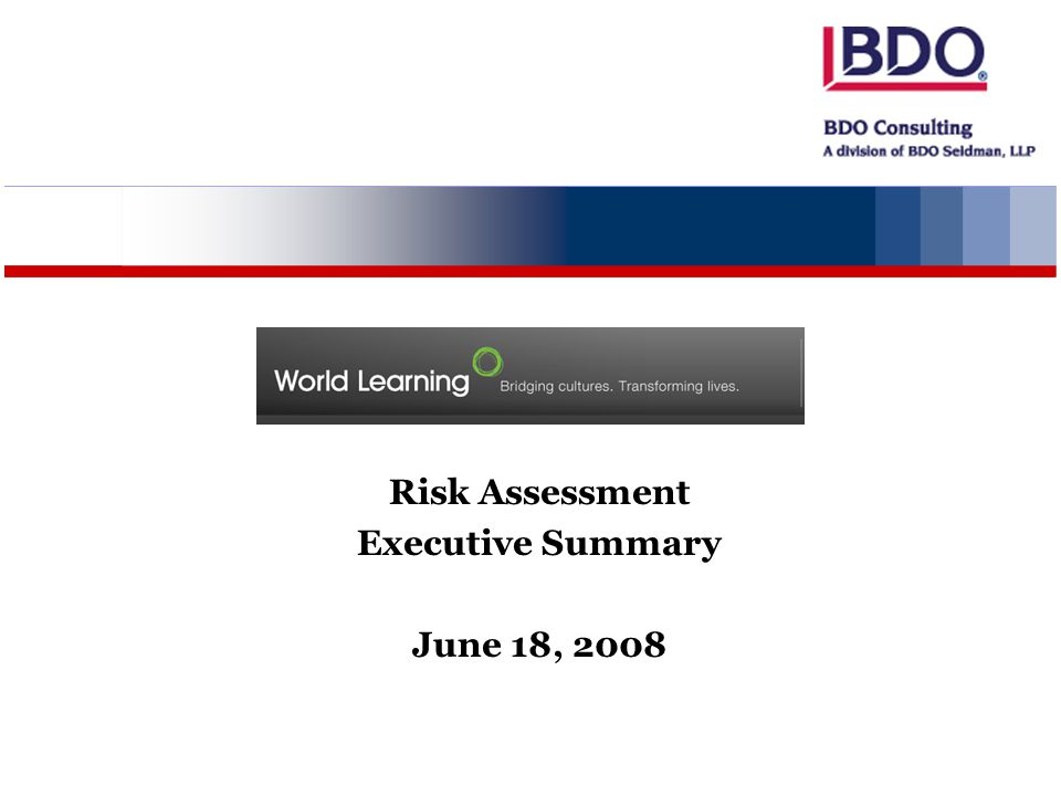 Risk Assessment Executive Summary June 18, 2008