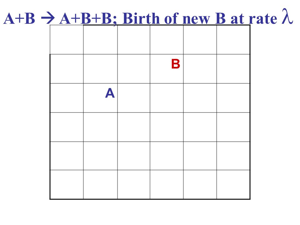 B A A+B  A+B+B; Birth of new B at rate