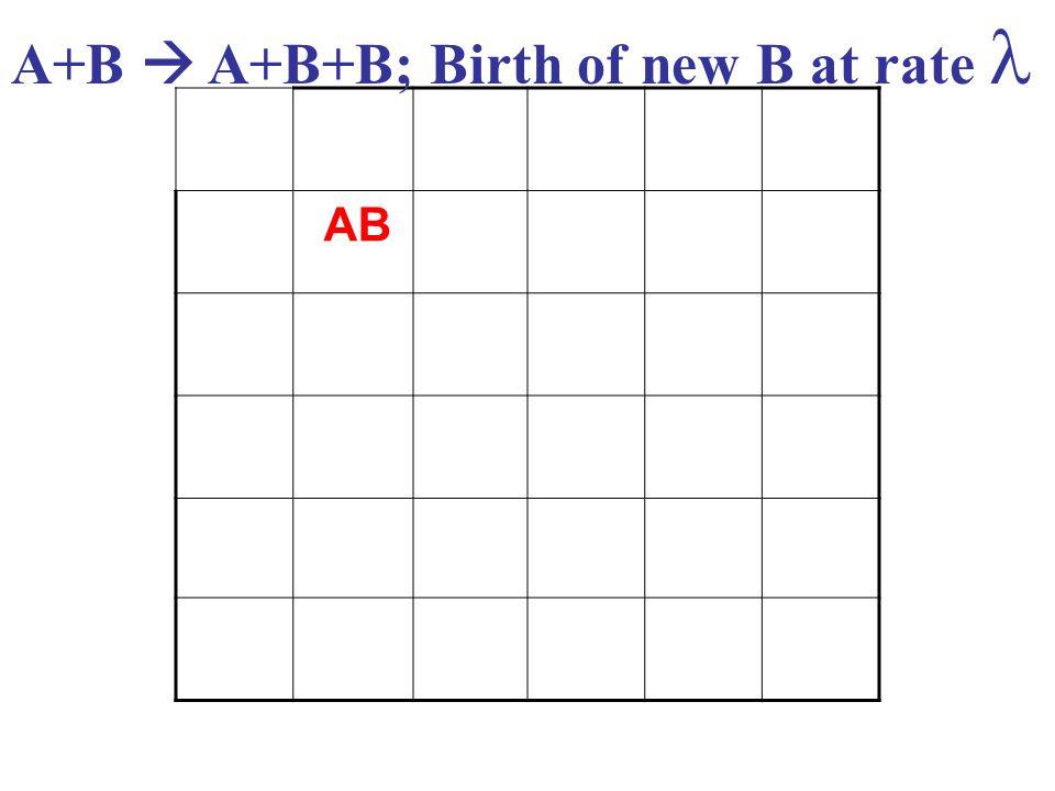 AB A+B  A+B+B; Birth of new B at rate