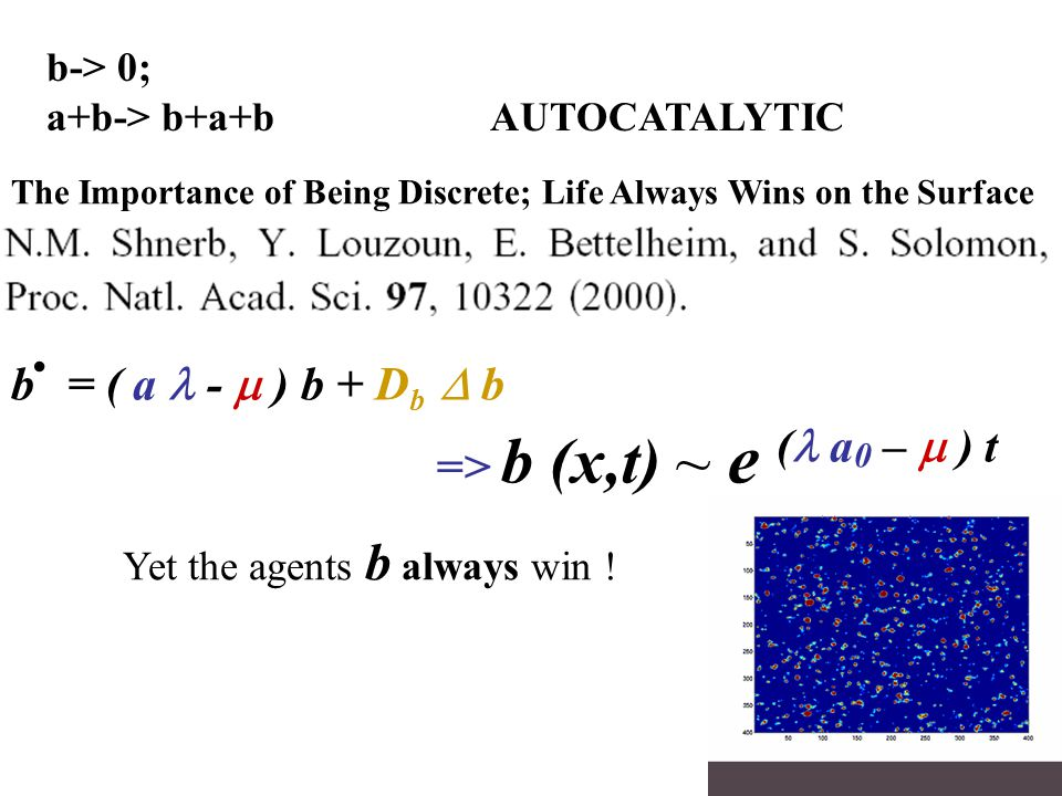 Yet the agents b always win ! b. = ( a -  )  b + D b  b => b (x,t) ~ e ( a 0 –  ) t b-> 0; a+b-> b+a+b AUTOCATALYTIC The Importance of Being