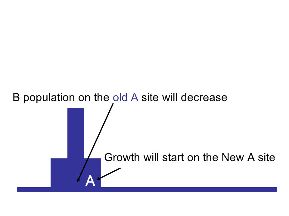 A Growth will start on the New A site B population on the old A site will decrease