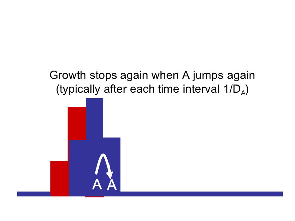A A A A Growth stops again when A jumps again (typically after each time interval 1/D A )