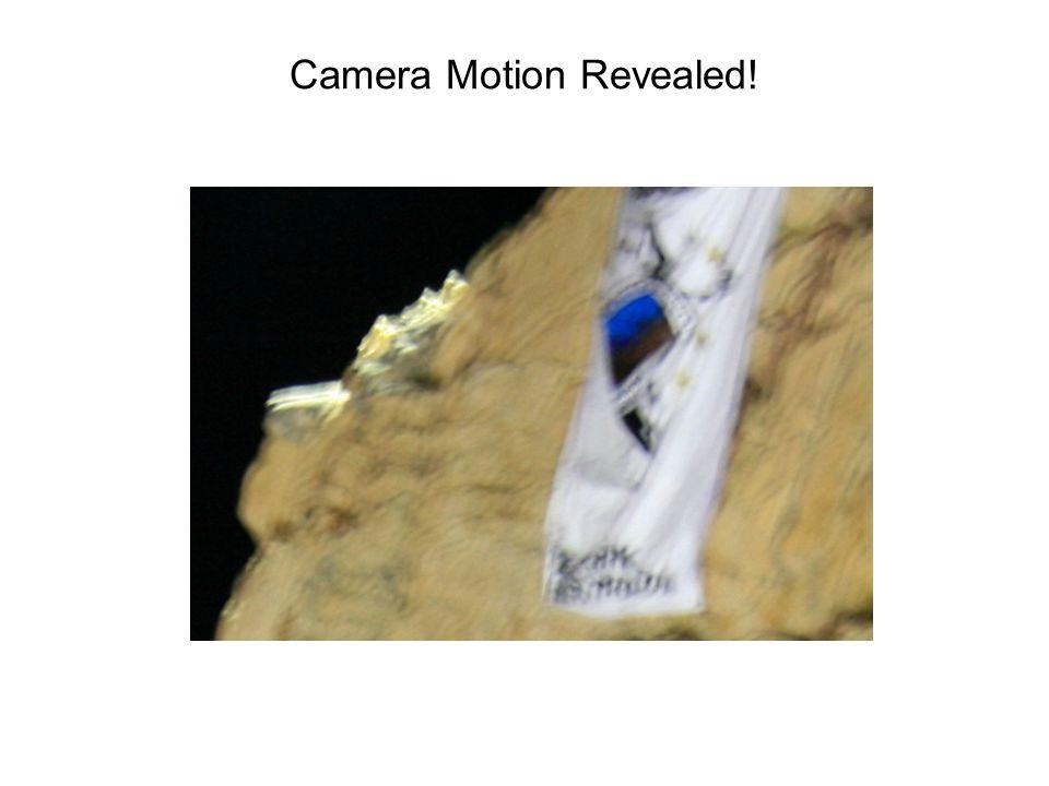 Camera Motion Revealed!