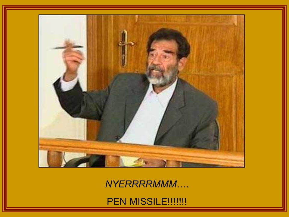 NYERRRRMMM…. PEN MISSILE!!!!!!!