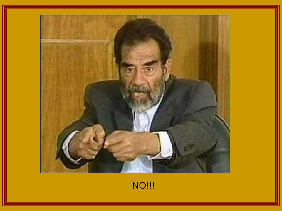 Judge: Ok, one paper.Saddam: TIGER HAND. RAWR!!!!.