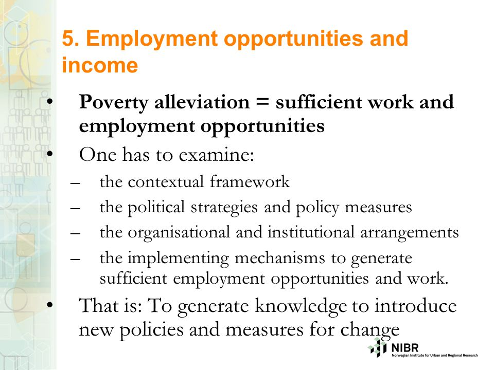 5. Employment opportunities and income Poverty alleviation = sufficient work and employment opportunities One has to examine: –the contextual framewor