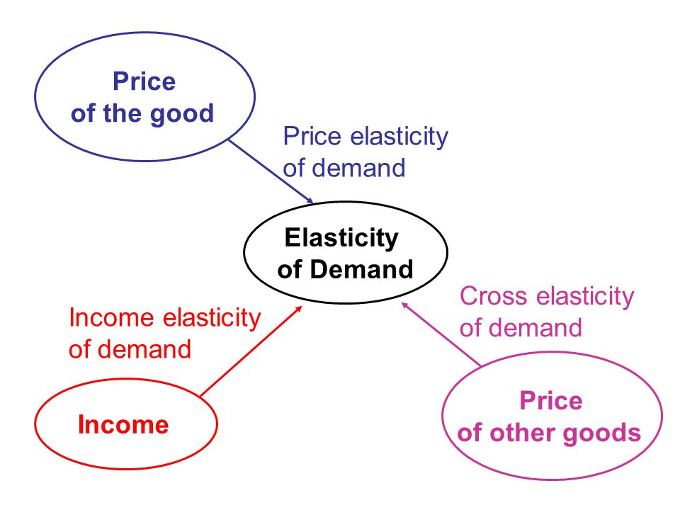 Price of the good Elasticity of Demand Income Price of other goods Price elasticity of demand Income elasticity of demand Cross elasticity of demand