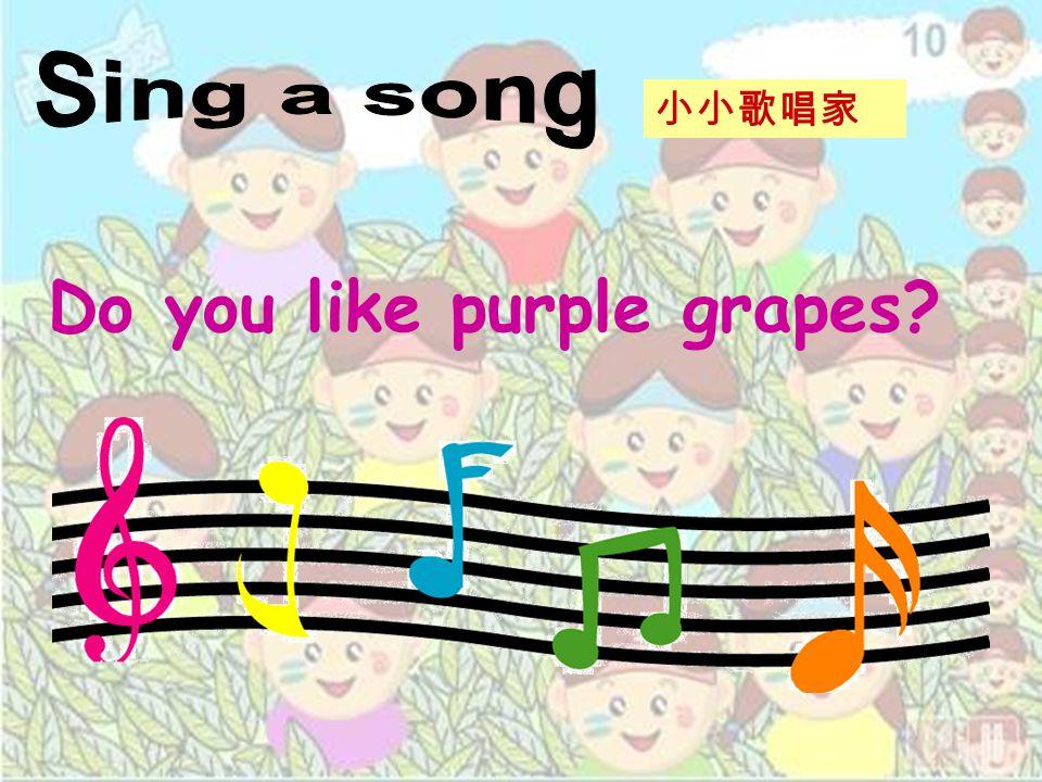 Do you like purple grapes? 小小歌唱家