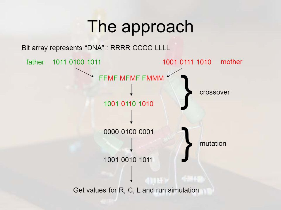 The approach 1011 0100 10111001 0111 1010 Bit array represents DNA : RRRR CCCC LLLL FFMF MFMF FMMM 1001 0110 1010 } crossover 0000 0100 0001 1001 0010 1011 } mutation Get values for R, C, L and run simulation father mother