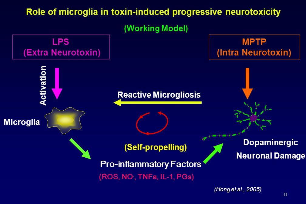 Role of microglia in toxin-induced progressive neurotoxicity Pro-inflammatory Factors (ROS, NO., TNFa, IL-1, PGs) Reactive Microgliosis (Self-propelli