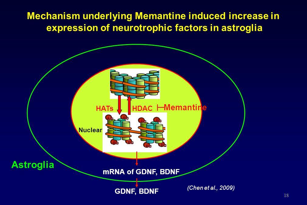 18 Mechanism underlying Memantine induced increase in expression of neurotrophic factors in astroglia HDACHATs Astroglia Memantine mRNA of GDNF, BDNF